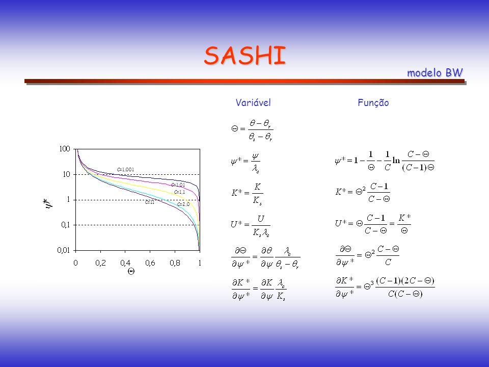SASHI modelo BW Variável Função * umidade volumétrica de saturação