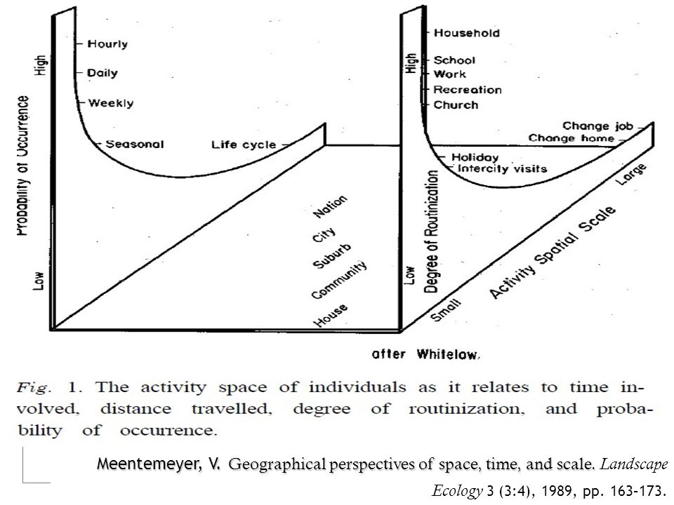 Meentemeyer, V. Geographical perspectives of space, time, and scale