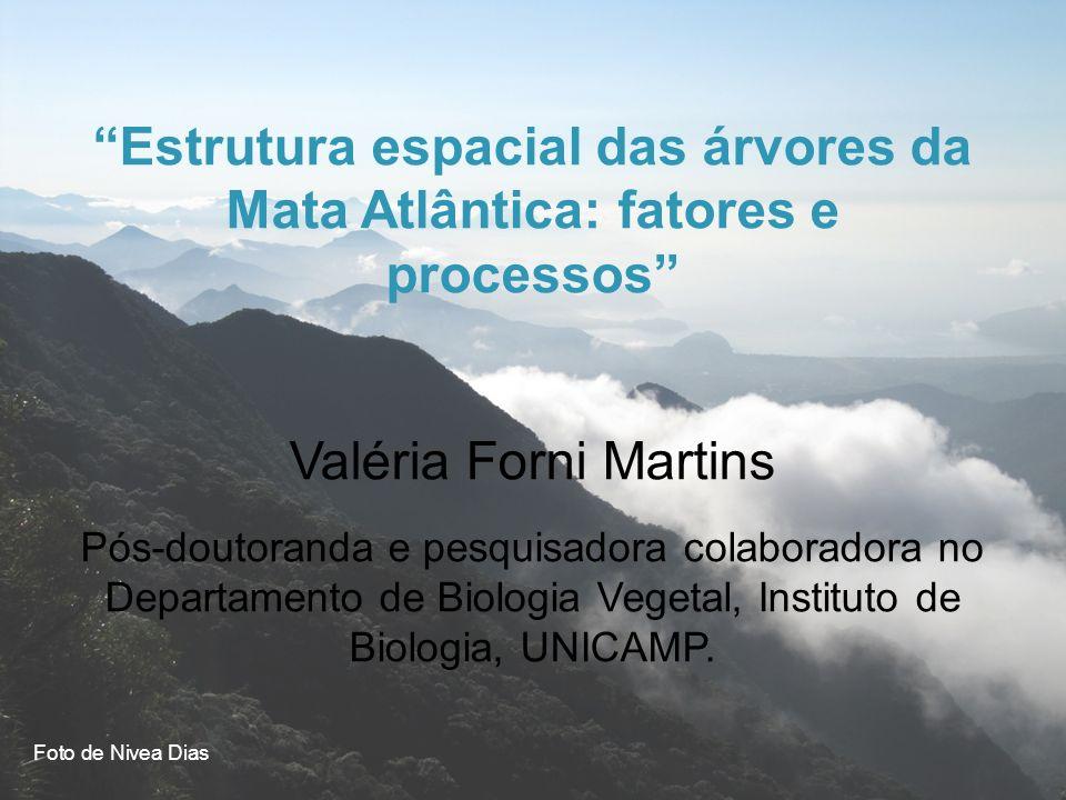 Estrutura espacial das árvores da Mata Atlântica: fatores e processos