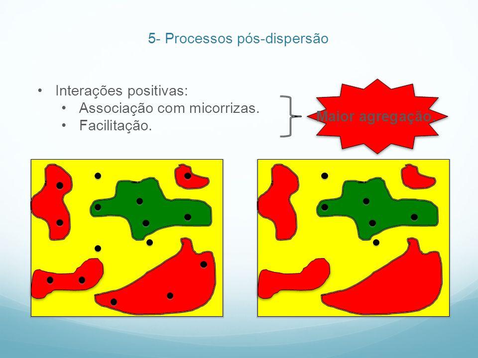 5- Processos pós-dispersão