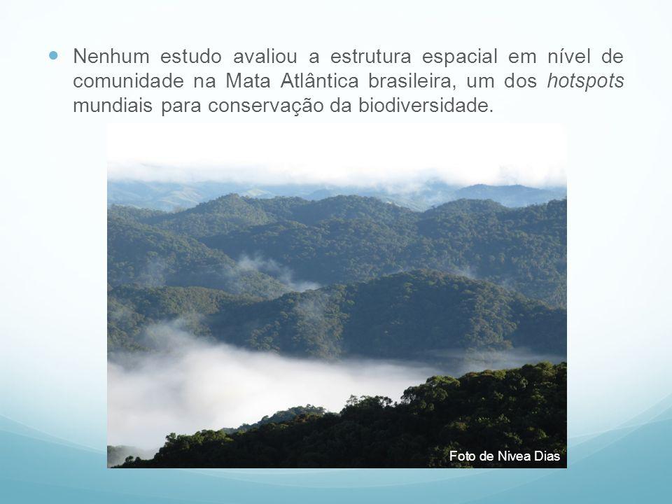 Nenhum estudo avaliou a estrutura espacial em nível de comunidade na Mata Atlântica brasileira, um dos hotspots mundiais para conservação da biodiversidade.