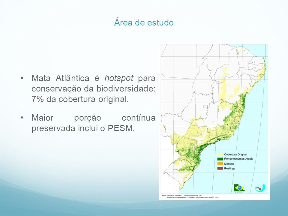 Área de estudo Mata Atlântica é hotspot para conservação da biodiversidade: 7% da cobertura original.