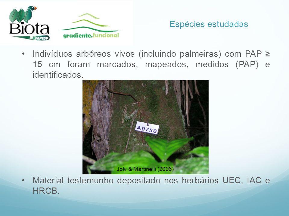 Material testemunho depositado nos herbários UEC, IAC e HRCB.