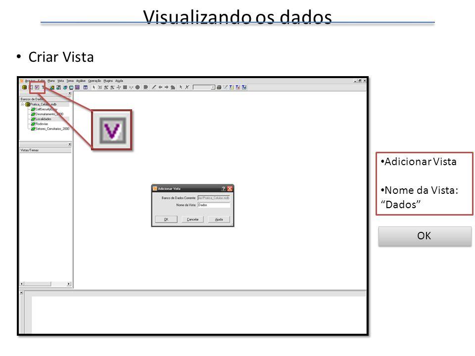 Visualizando os dados Criar Vista Adicionar Vista