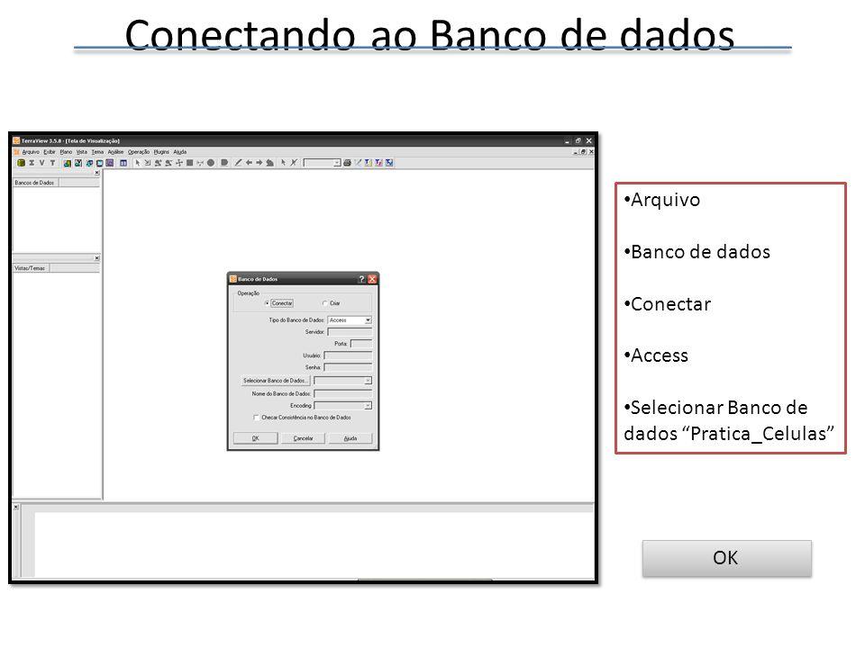 Conectando ao Banco de dados