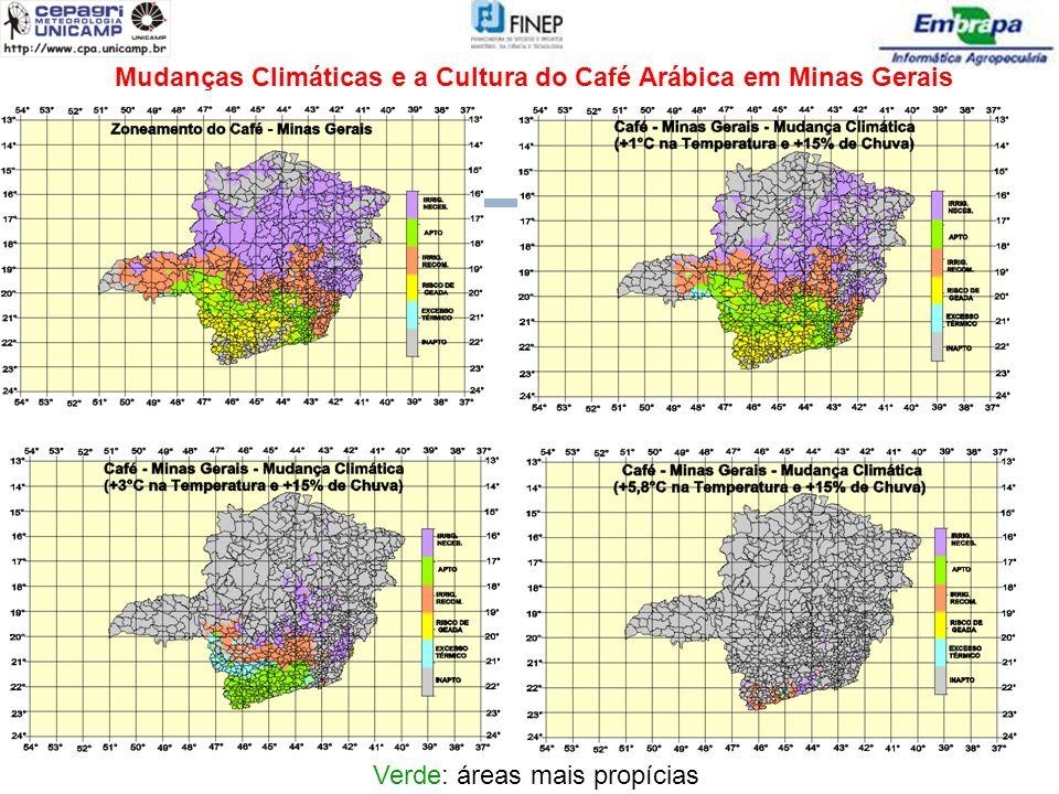 Mudanças Climáticas e a Cultura do Café Arábica em Minas Gerais