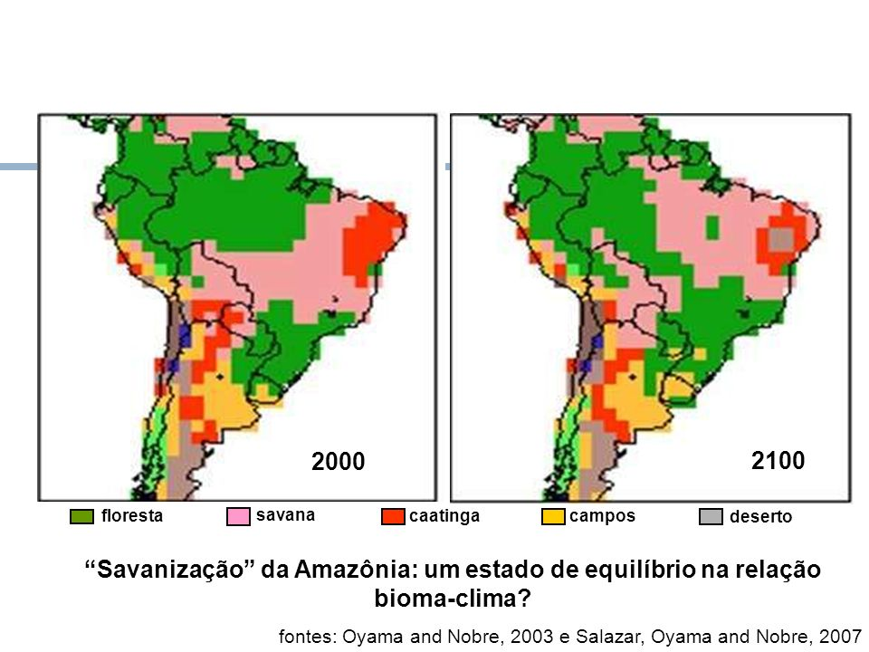 Futuro dos Biomas Amazônicos