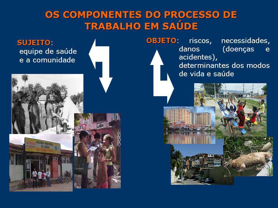 OS COMPONENTES DO PROCESSO DE