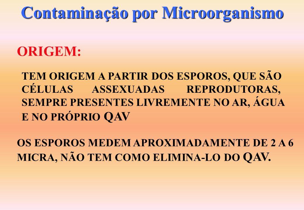 Contaminação por Microorganismo