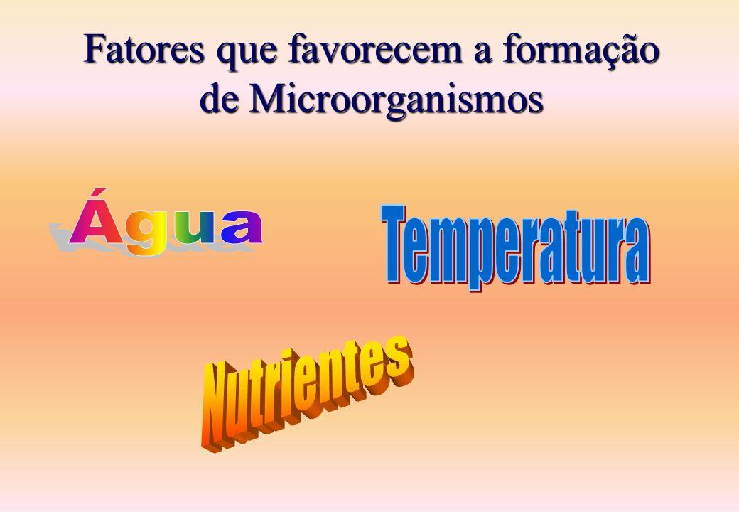 Fatores que favorecem a formação de Microorganismos