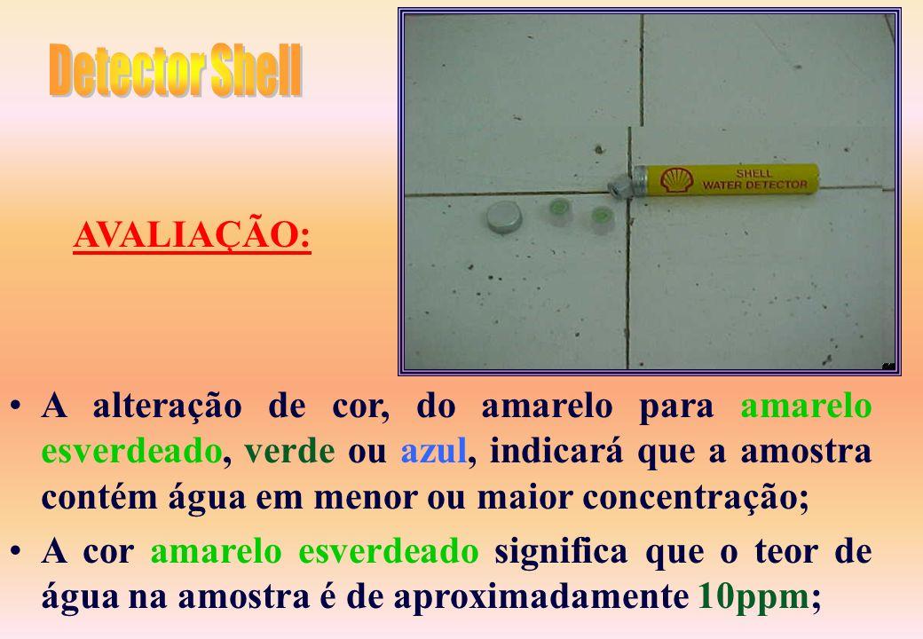 Detector Shell AVALIAÇÃO: