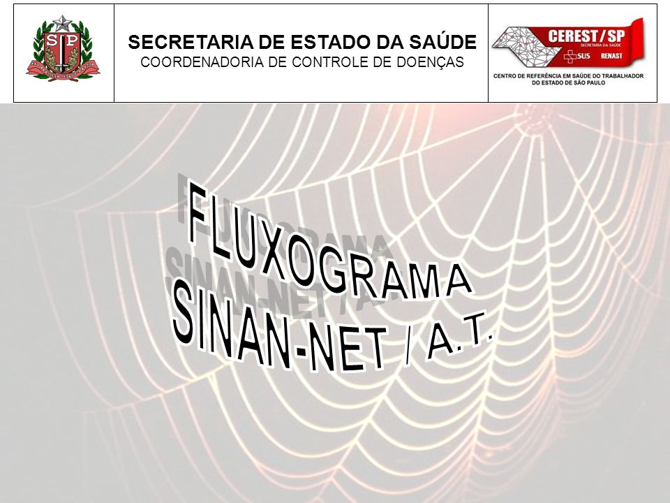 FLUXOGRAMA SINAN-NET / A.T.