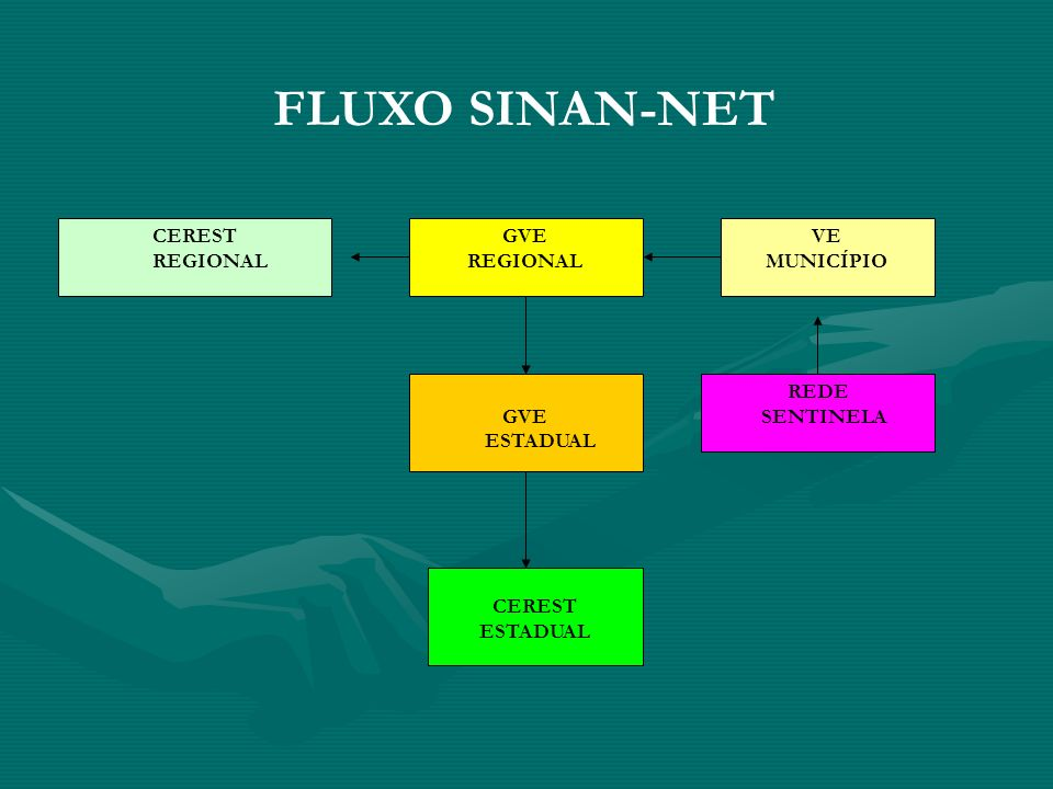 FLUXO SINAN-NET CEREST REGIONAL GVE VE MUNICÍPIO REDE ESTADUAL