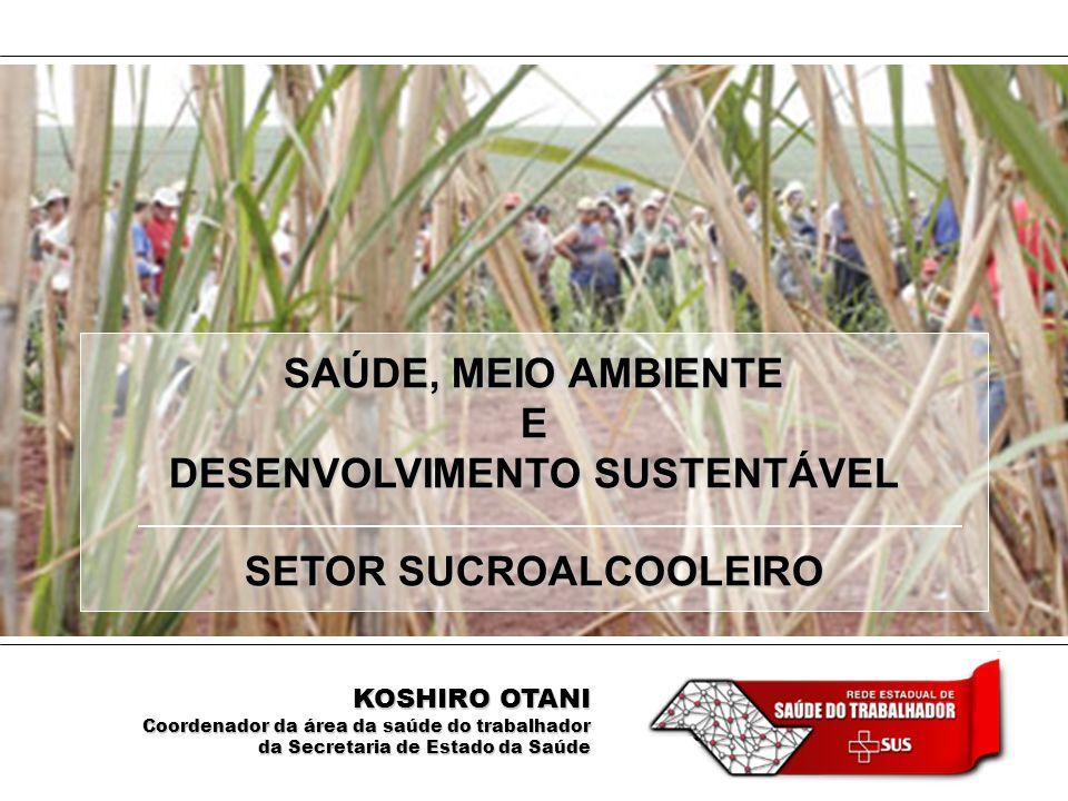 DESENVOLVIMENTO SUSTENTÁVEL SETOR SUCROALCOOLEIRO