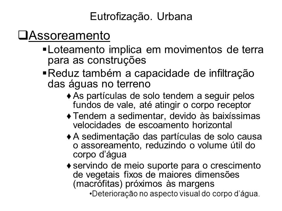 Assoreamento Eutrofização. Urbana