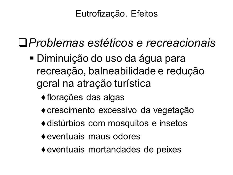Problemas estéticos e recreacionais