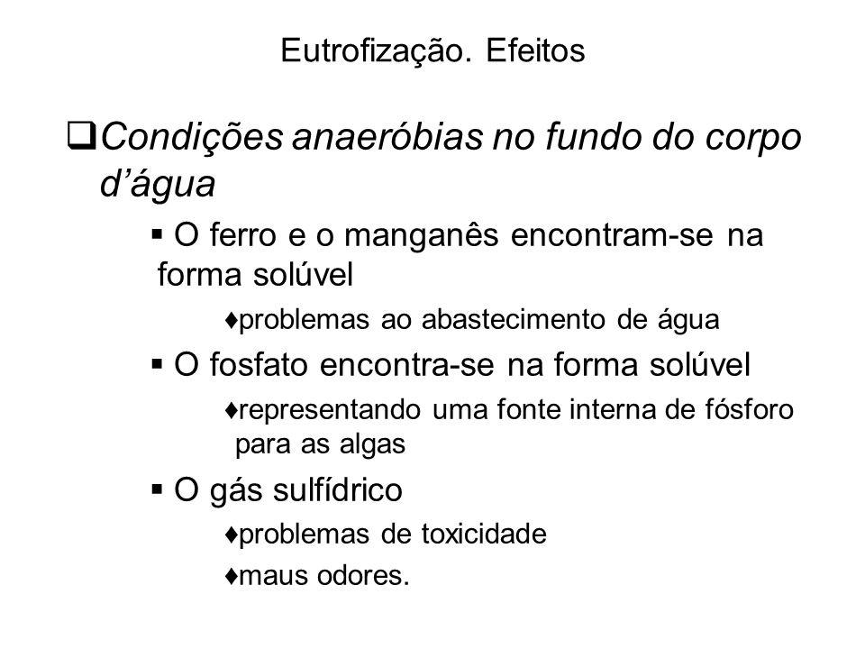Condições anaeróbias no fundo do corpo d'água