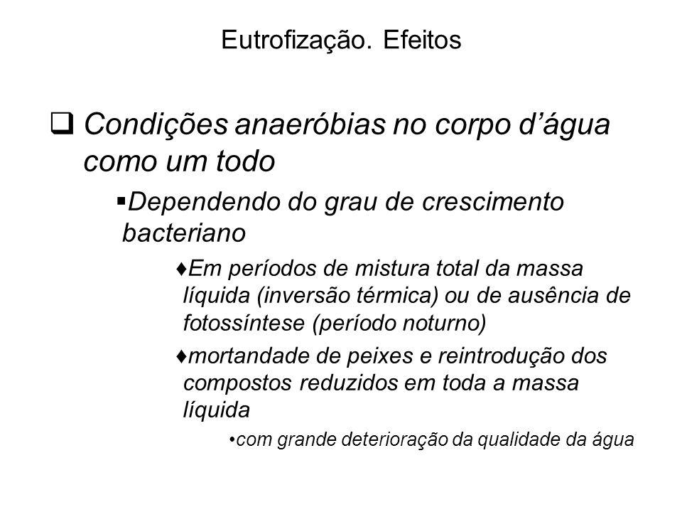 Condições anaeróbias no corpo d'água como um todo
