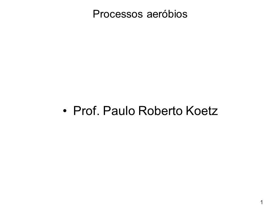 Prof. Paulo Roberto Koetz