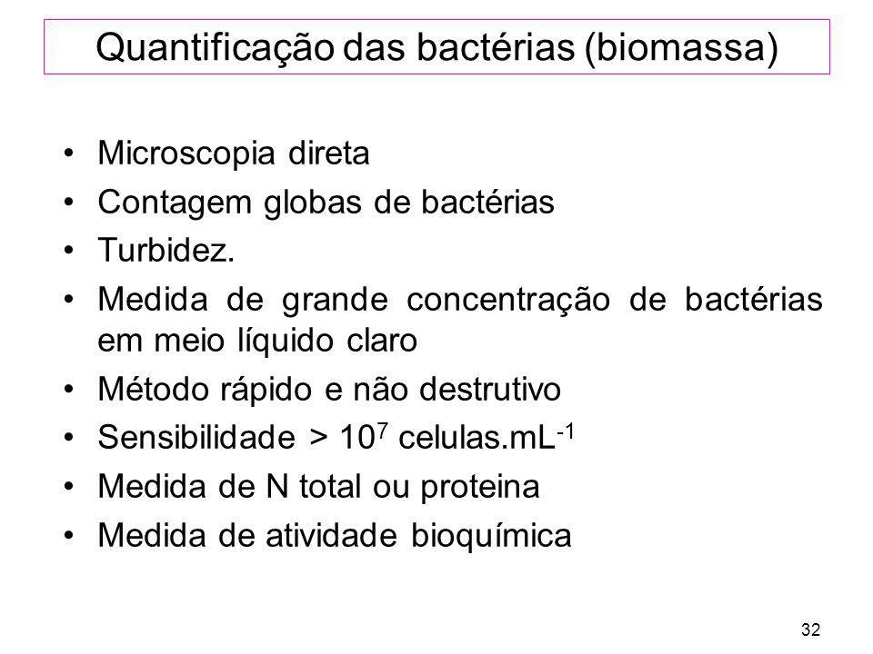 Quantificação das bactérias (biomassa)