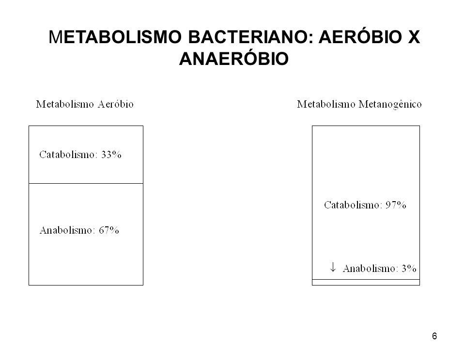 METABOLISMO BACTERIANO: AERÓBIO X ANAERÓBIO