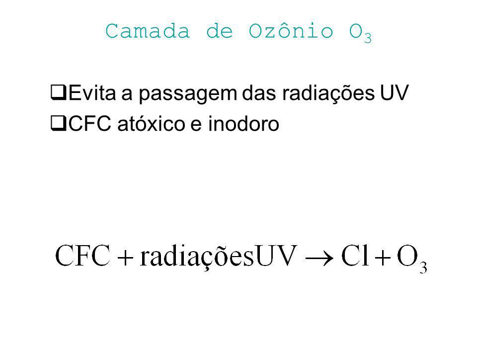 Camada de Ozônio O3 Evita a passagem das radiações UV