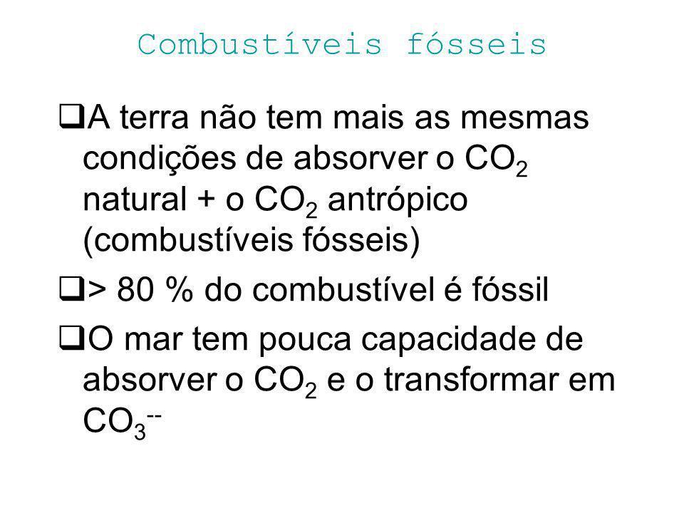 Combustíveis fósseis A terra não tem mais as mesmas condições de absorver o CO2 natural + o CO2 antrópico (combustíveis fósseis)