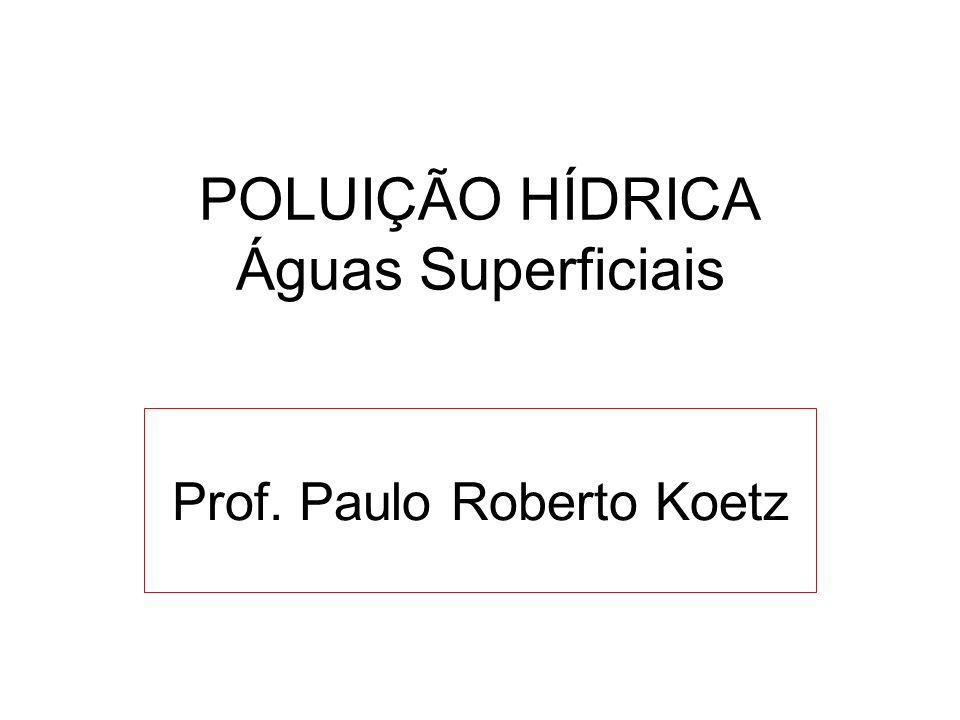 POLUIÇÃO HÍDRICA Águas Superficiais