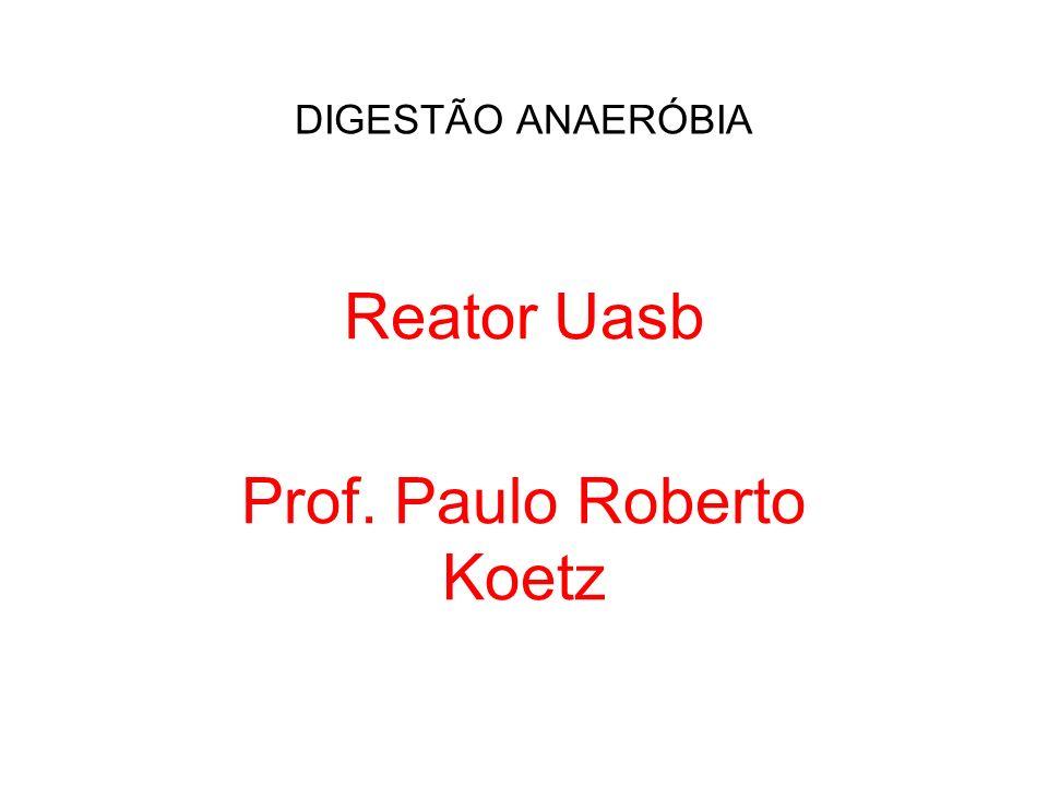 Reator Uasb Prof. Paulo Roberto Koetz