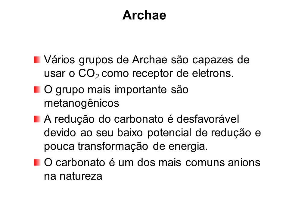 26/03/2017 Archae. Vários grupos de Archae são capazes de usar o CO2 como receptor de eletrons. O grupo mais importante são metanogênicos.