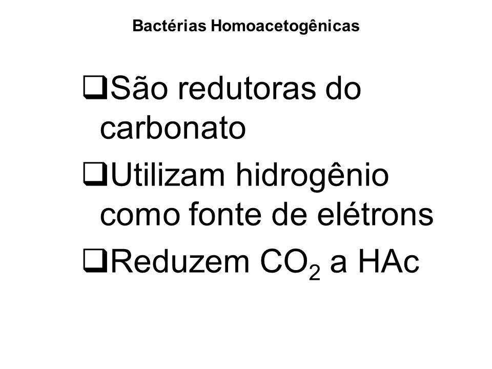 Bactérias Homoacetogênicas