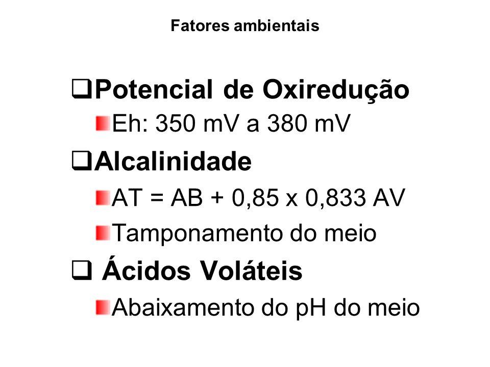 Potencial de Oxiredução Alcalinidade