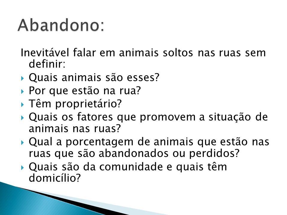 Abandono: Inevitável falar em animais soltos nas ruas sem definir: