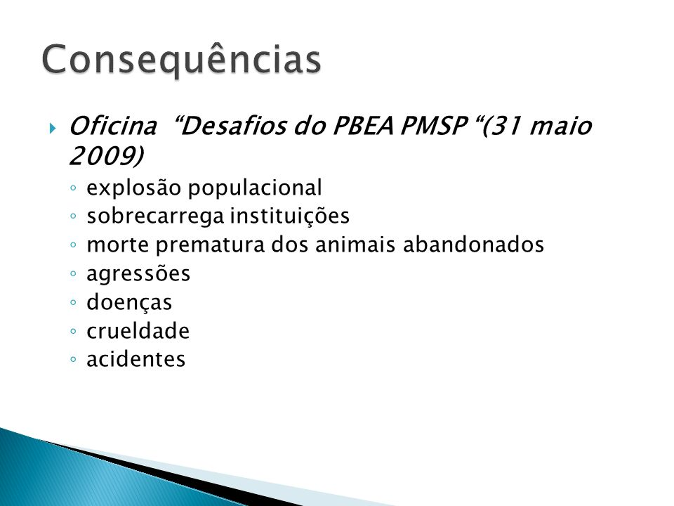 Consequências Oficina Desafios do PBEA PMSP (31 maio 2009)