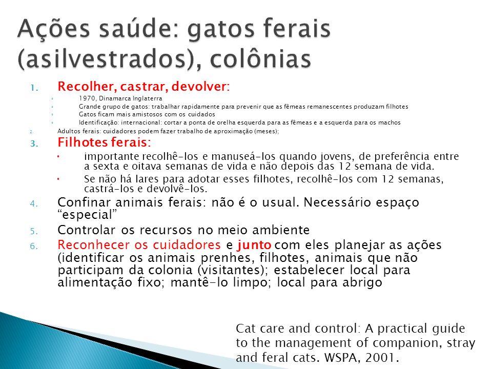 Ações saúde: gatos ferais (asilvestrados), colônias
