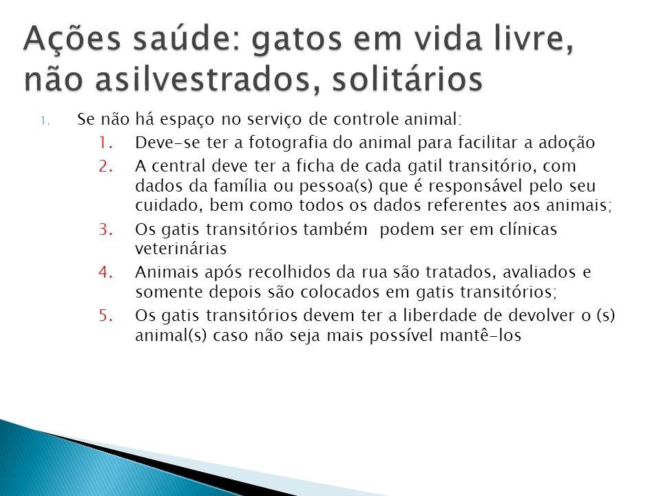 Ações saúde: gatos em vida livre, não asilvestrados, solitários
