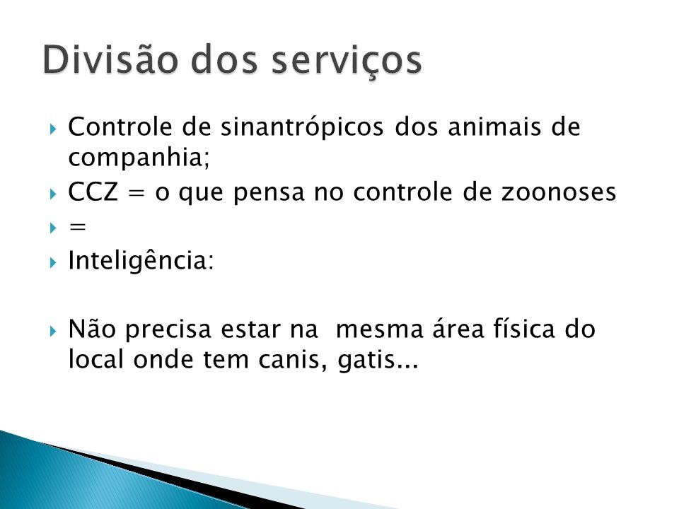 Divisão dos serviços Controle de sinantrópicos dos animais de companhia; CCZ = o que pensa no controle de zoonoses.