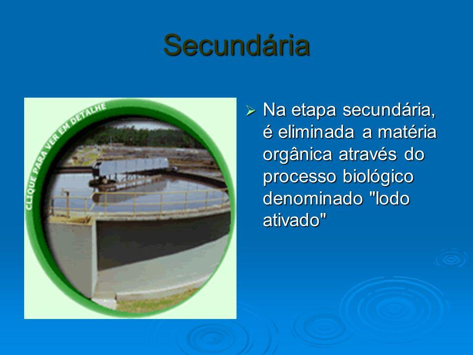 Secundária Na etapa secundária, é eliminada a matéria orgânica através do processo biológico denominado lodo ativado