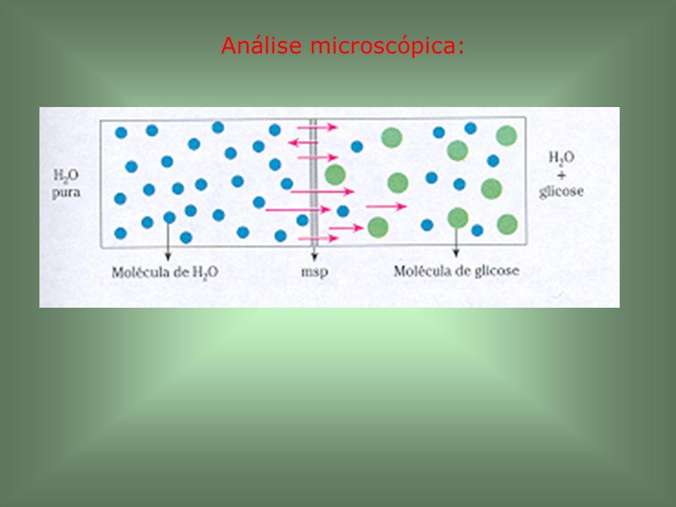 Análise microscópica: