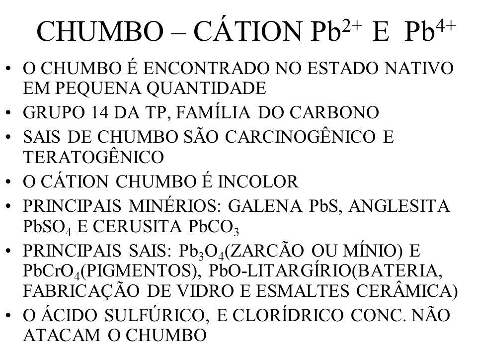 CHUMBO – CÁTION Pb2+ E Pb4+