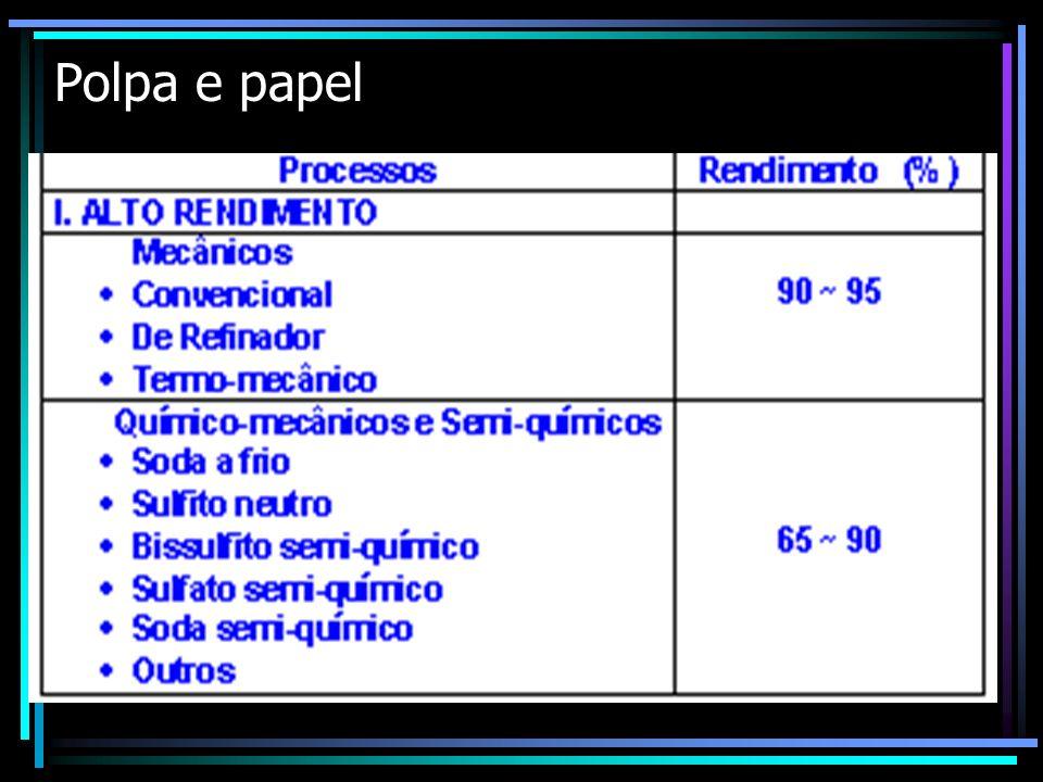 Polpa e papel