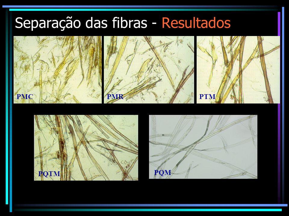Separação das fibras - Resultados