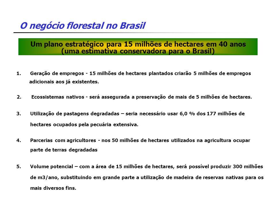 Um plano estratégico para 15 milhões de hectares em 40 anos