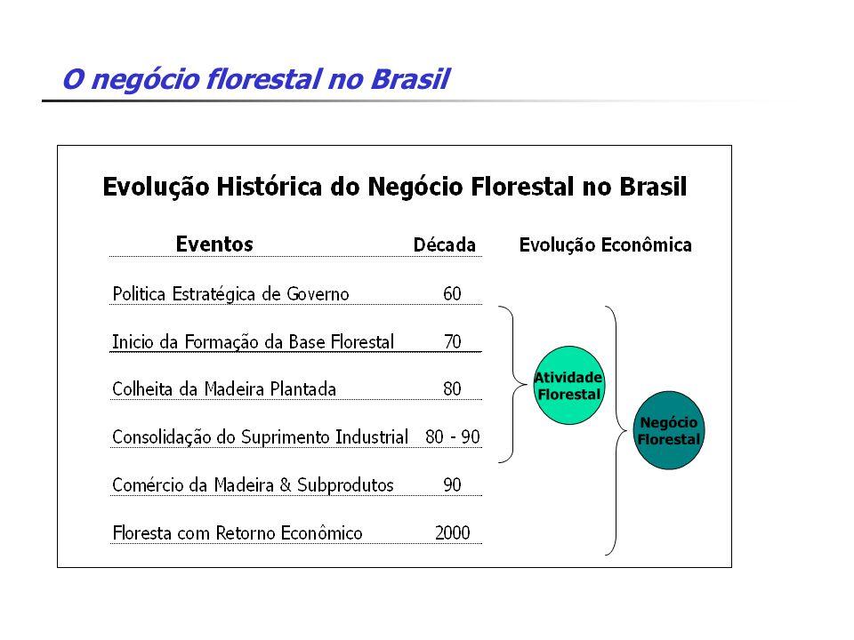 Atividade Florestal Negócio Florestal