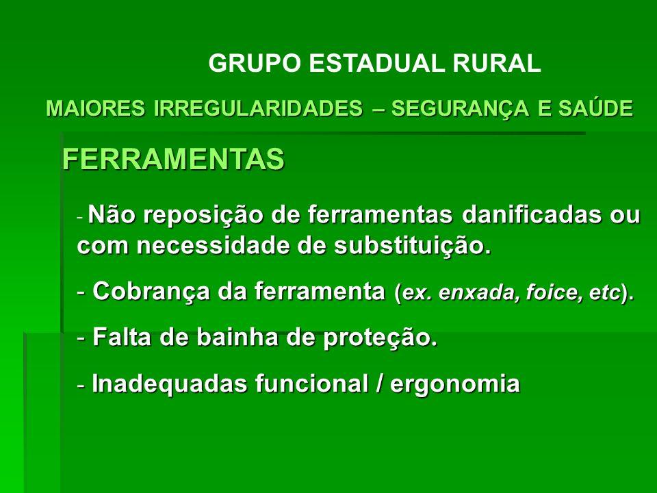 FERRAMENTAS GRUPO ESTADUAL RURAL
