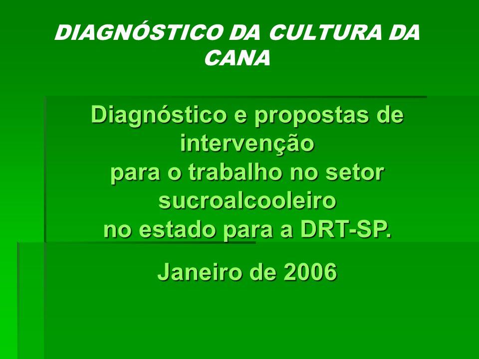 DIAGNÓSTICO DA CULTURA DA CANA
