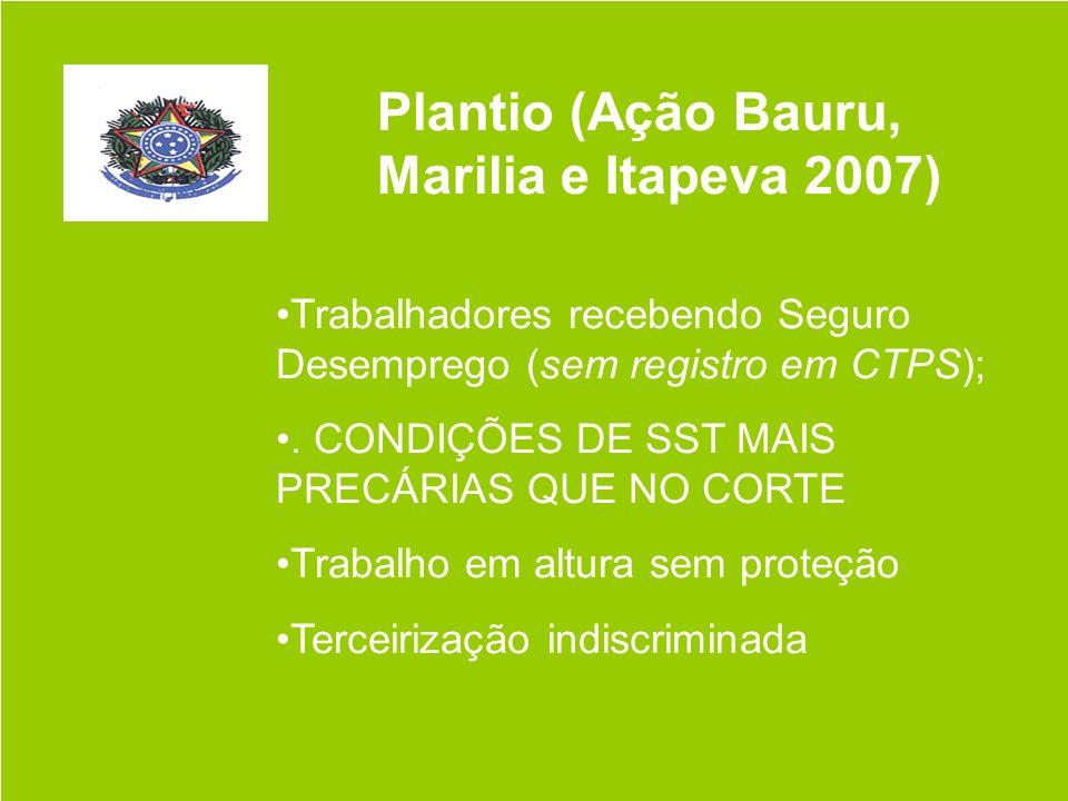 Plantio (Ação Bauru, Marilia e Itapeva 2007)