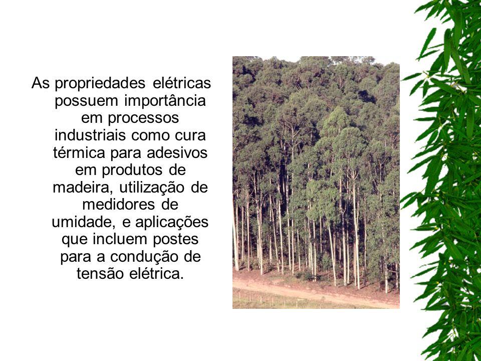 As propriedades elétricas possuem importância em processos industriais como cura térmica para adesivos em produtos de madeira, utilização de medidores de umidade, e aplicações que incluem postes para a condução de tensão elétrica.