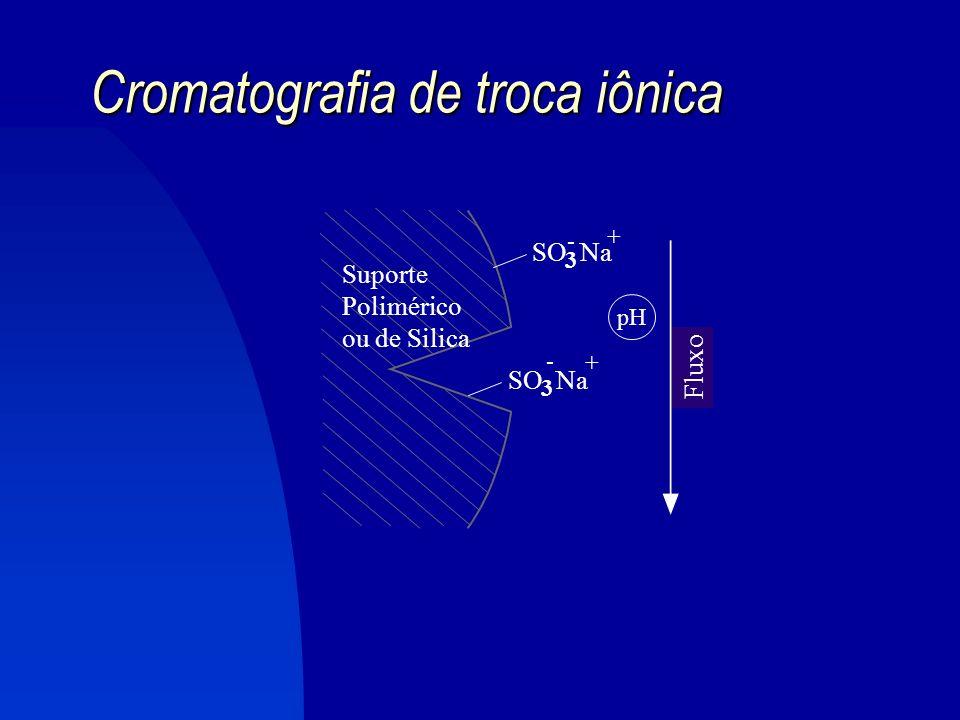 Cromatografia de troca iônica