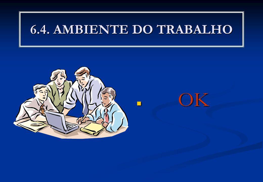 6.4. AMBIENTE DO TRABALHO OK